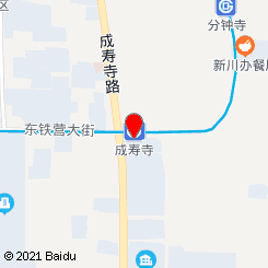 金雪儿(成寿寺)