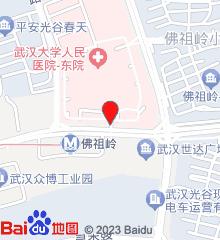 武汉大学人民医院东院