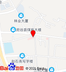 陕西省榆林市府谷县中医医院