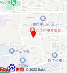 武汉市第五医院