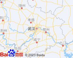 武汉电子地图