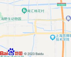 南汇电子地图