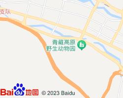 城西电子地图