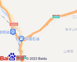 武都电子地图