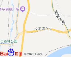 大渡口电子地图