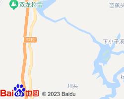 城步电子地图