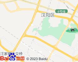 汉阳电子地图