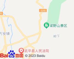 武平电子地图